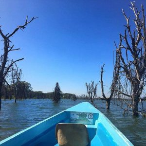 Boat ride in Lake Naivasha